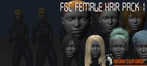 3d models fgc_fem_hairpack1
